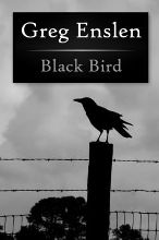 Black Bird Cover