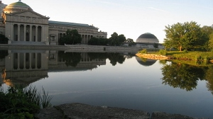 Chicago's Museum of Science and Industry at Jackson Park, one of the original World's Fair buildings.