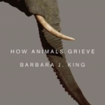 How Animals Grieve