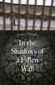 Shadow of a Fallen Wall Cover (193x300)