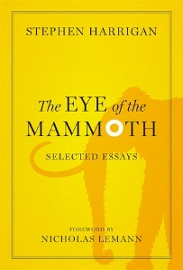 Eye of the Mammoth cover (203x300)