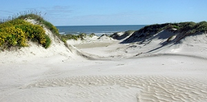 Padre Island, at 113 miles it's the world's longest barrier island.