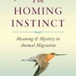 Homing Instinct, The