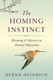 The homing instinct cover (183x276)