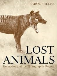 lost animals cover (194x259)