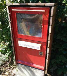 Little Free Library in newsstand box
