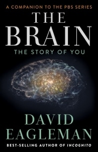 The brain cover (195x300)
