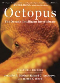 Octopus: The Ocean's Intelligent Invertebrate cover
