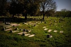 Africatown cemetery photo
