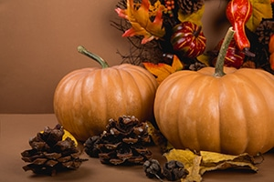Fall pumpkins, leaves and pinecones