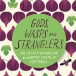 Gods, Wasps and Strangers book cover