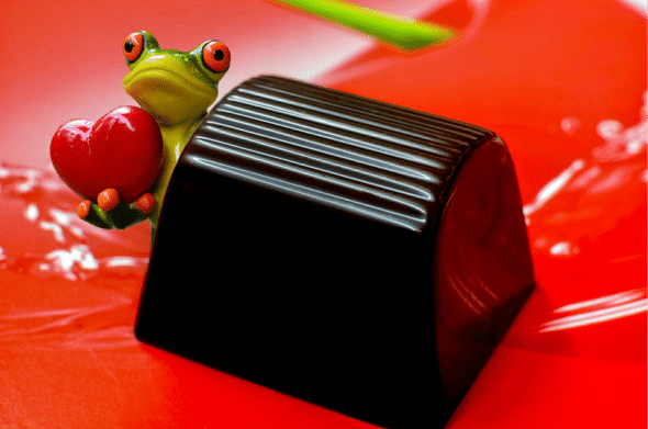 frog with chocolate
