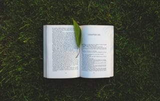 A leaf inside the pages of an open book on grass