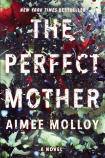 the perfect mother by aimee molloy book cover
