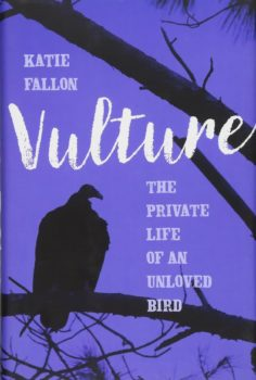 vulture book cover