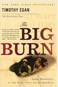 big burn book cover