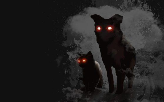 animals with shining eyes