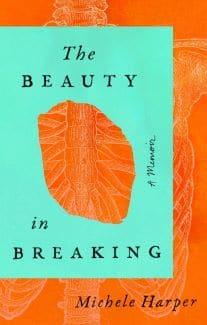 Beauty in Breaking book cover