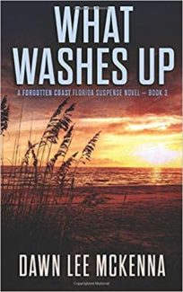 what washes up book cover