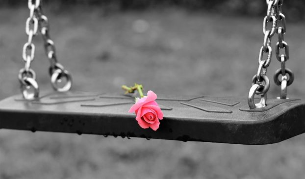 rose on a swing