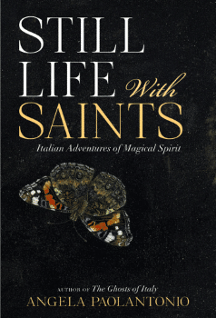 still life with saints book cover